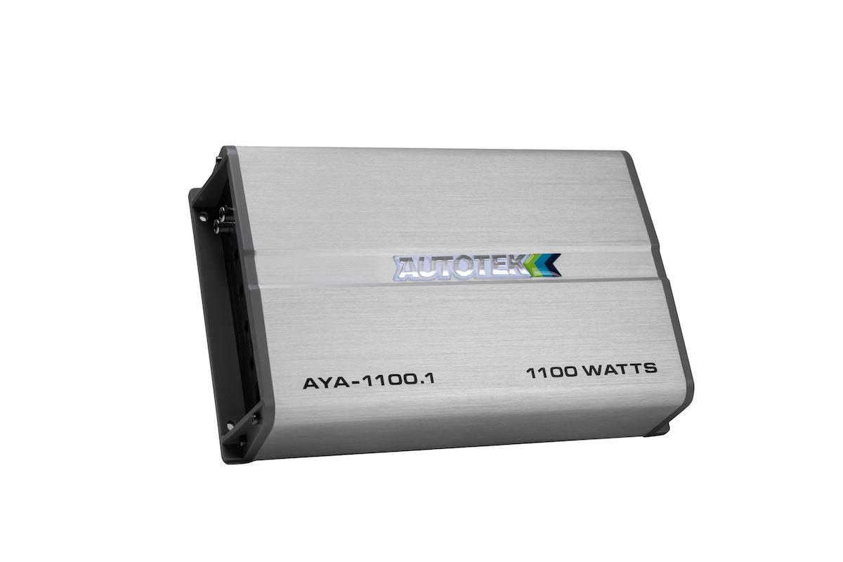 AYA1100.1