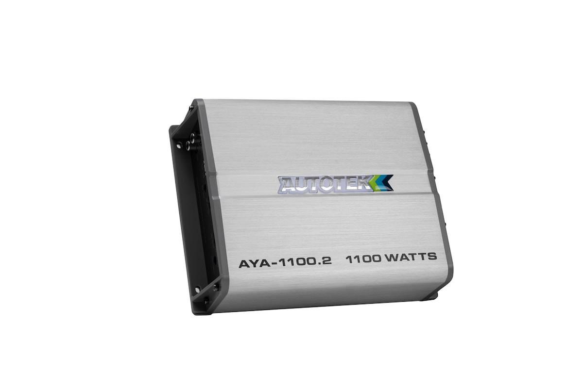 AYA1100.2